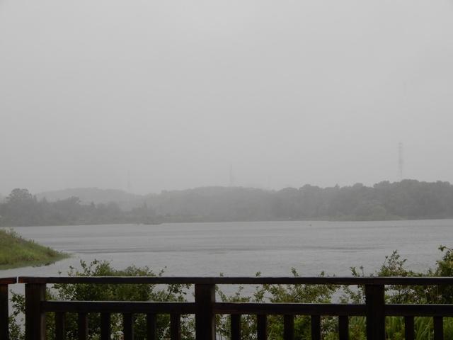 台風の勅使池